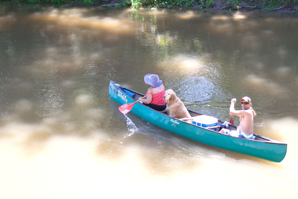 Man and woman canoeing the Rifle River with thier dog.