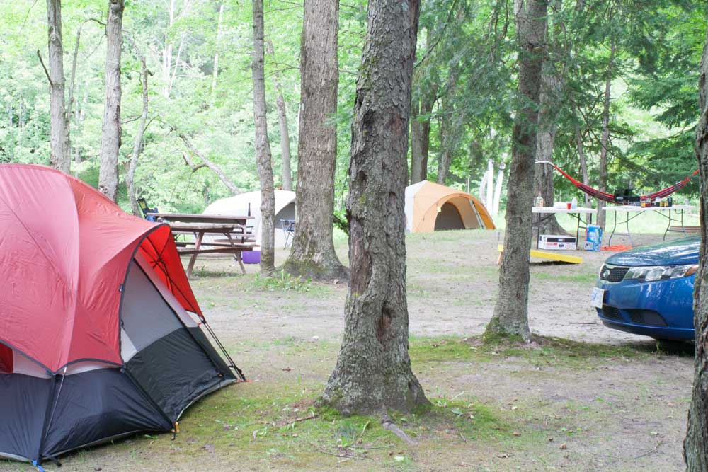Russell River Campsite on river, Omar, MI